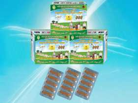 Khanh Thien worm medicine